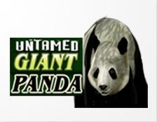 Untamed Giant Panda Spielautomat